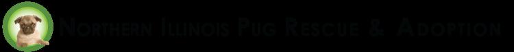 Northern Illinois Pug Rescue & Adoption